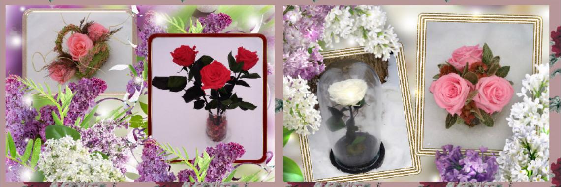 Неувядающие живые цветы