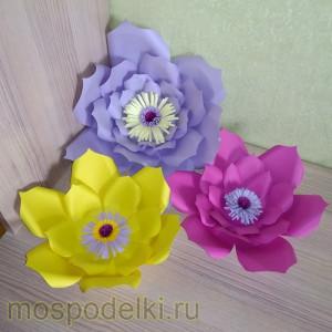 Комплект больших цветов
